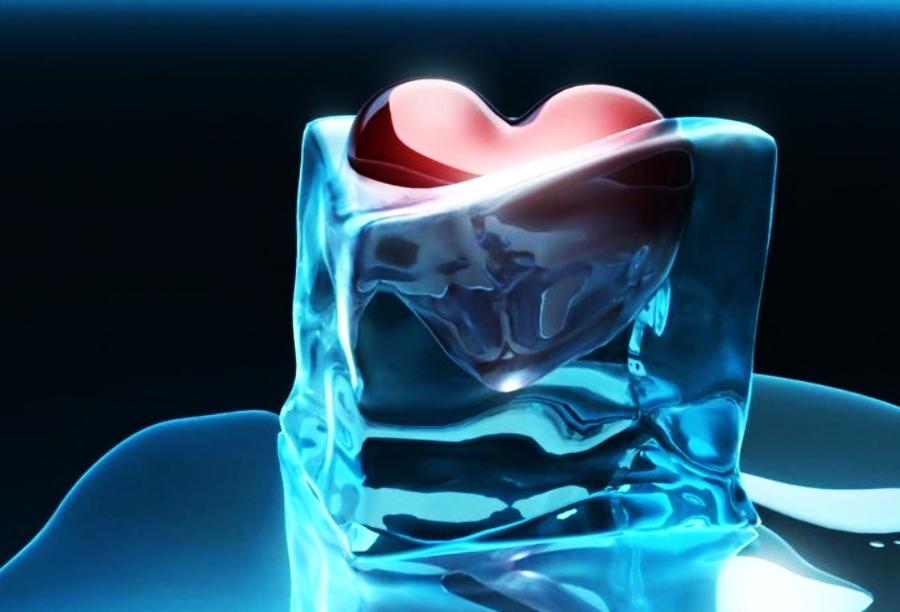 Открой свое сердце для других