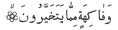 Коран, 56: 20