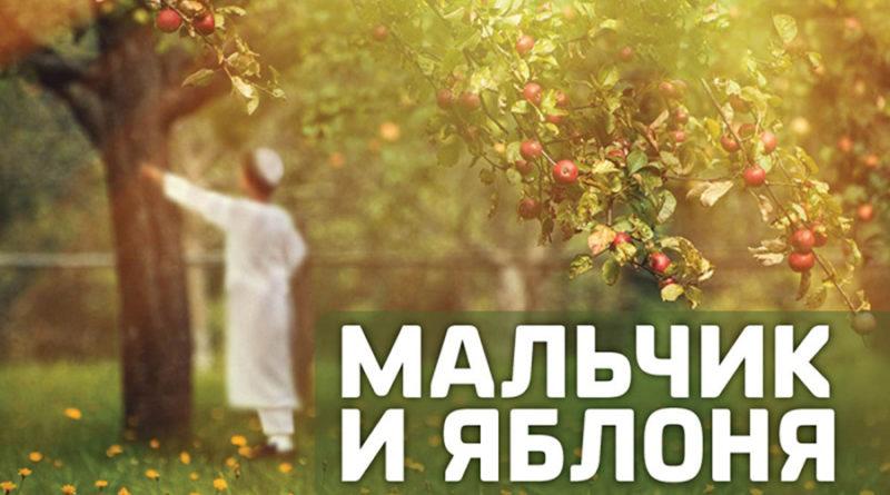 Притча: Мальчик и яблоня