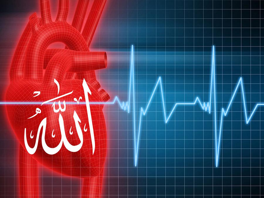 К совершенству сердца
