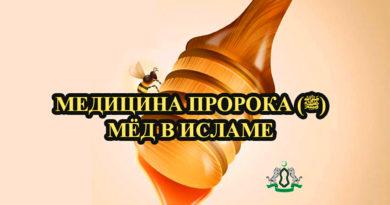 Медицина Пророка (ﷺ): Мёд в Исламе