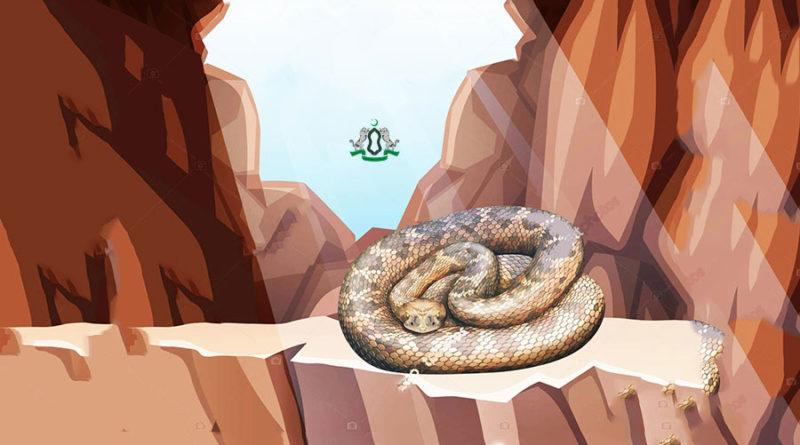 Змея, которая ждала встречи с Пророком (ﷺ) целых шестьсот лет