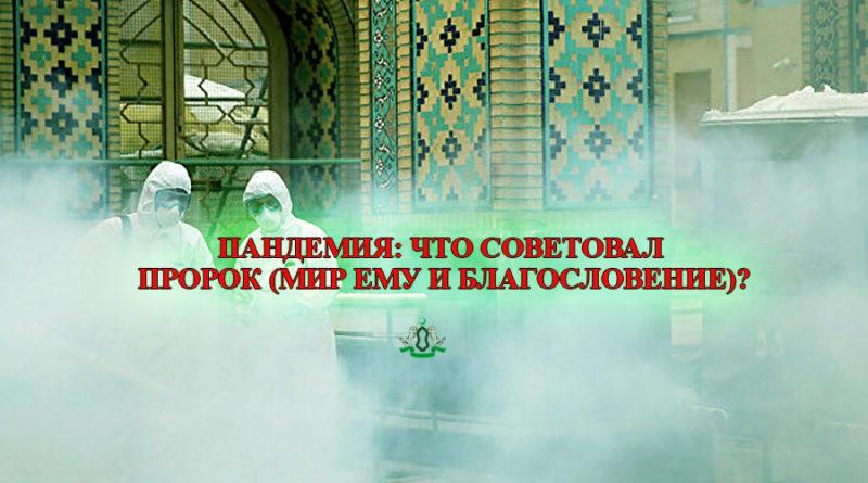 Пандемия: что советовал Пророк (мир ему и благословение)?