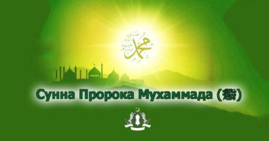 Сунна Пророка Мухаммада (ﷺ)