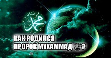 Как родился Пророк Мухаммад ﷺ?