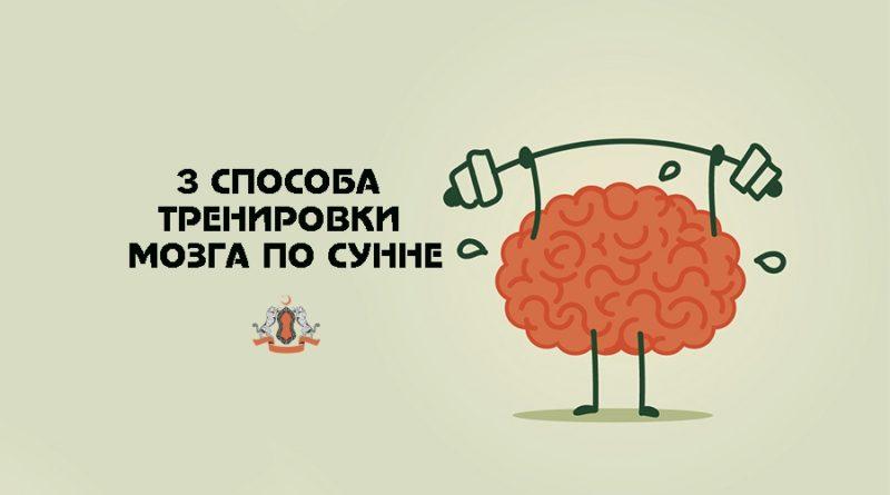 3 способа тренировки мозга по Сунне