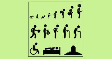 Жизненный цикл человека