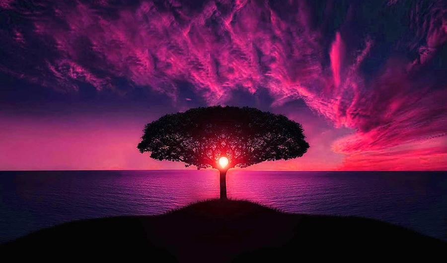 20 коротких хадисов с безграничной жизненной мудростью