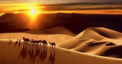 Удивительные факты из жизни Абдуррахмана ибн Ауфа
