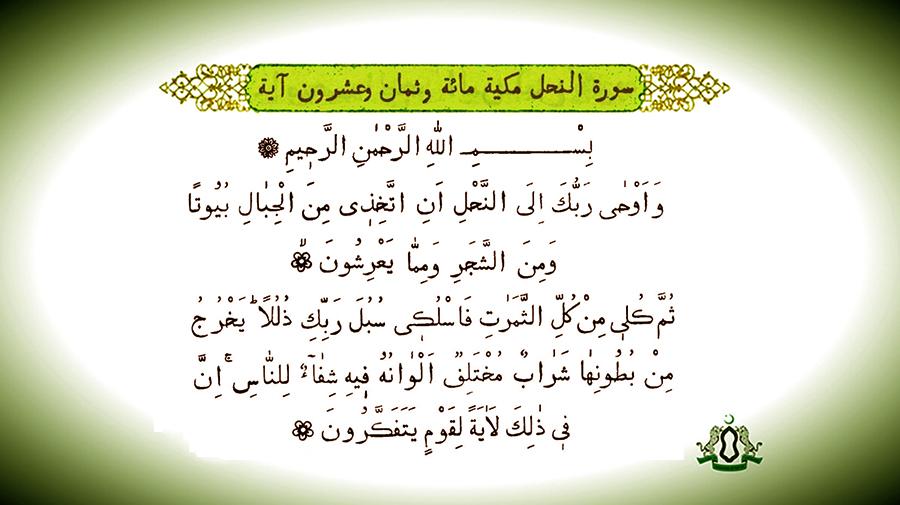 Лекарство от всех телесных болезней, упомянутое в Коране