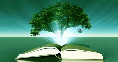 5 сунн выполнение которых увеличит ваш иман