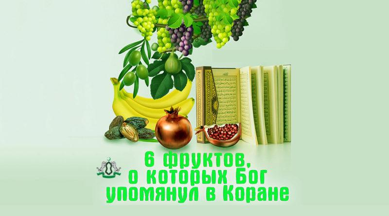 6 фруктов, о которых Бог упомянул в Коране