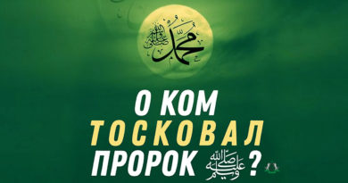 О ком тосковал Пророк ﷺ?