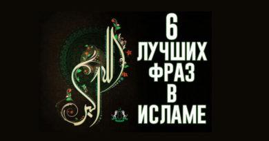 6 лучших фраз ислама
