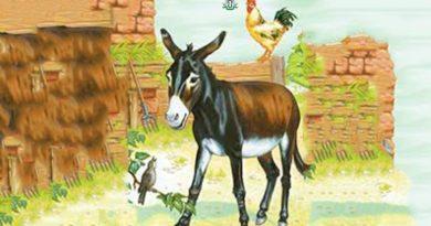 Какие животные видят ангелов и шайтанов?