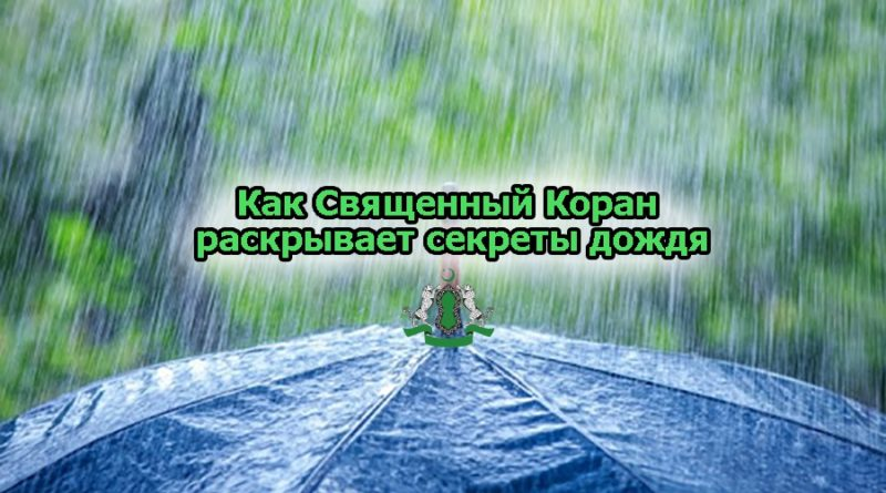 Как Священный Коран раскрывает секреты дождя