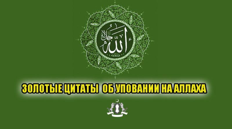 Золотые цитаты об уповании на Аллаха