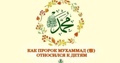 Как Пророк Мухаммад (ﷺ) относился к детям