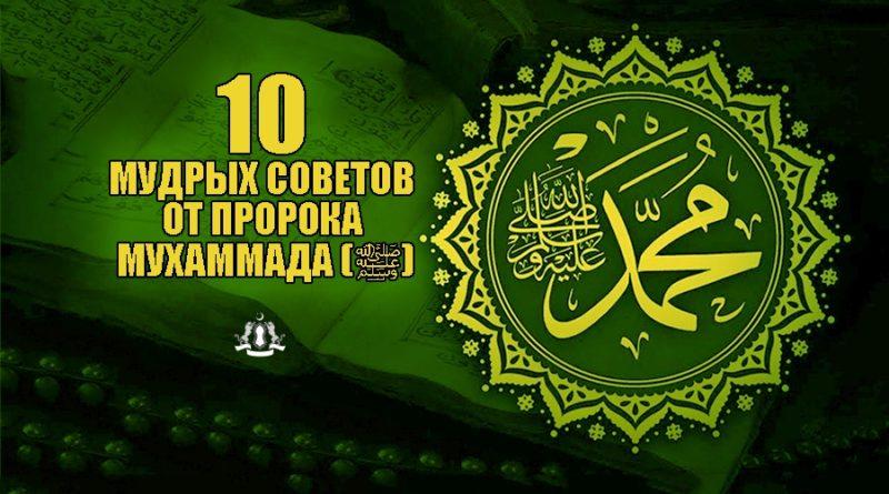 10 мудрых советов от Пророка Мухаммада (ﷺ)