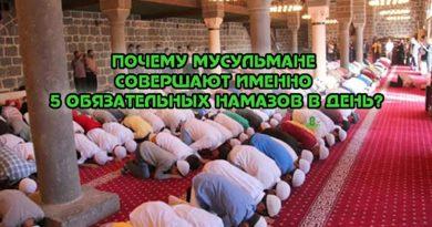Почему мусульмане совершают именно 5 обязательных намазов в день?