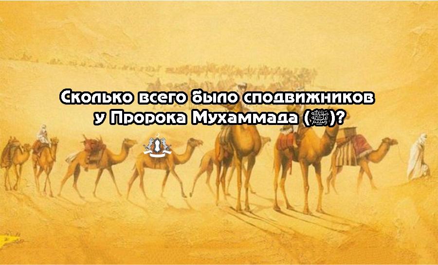 Сколько всего было сподвижников у Пророка Мухаммада (ﷺ)?
