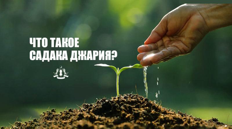 Что такое садака джария?