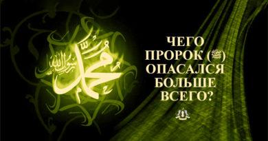 Чего Пророк (ﷺ) опасался больше всего?